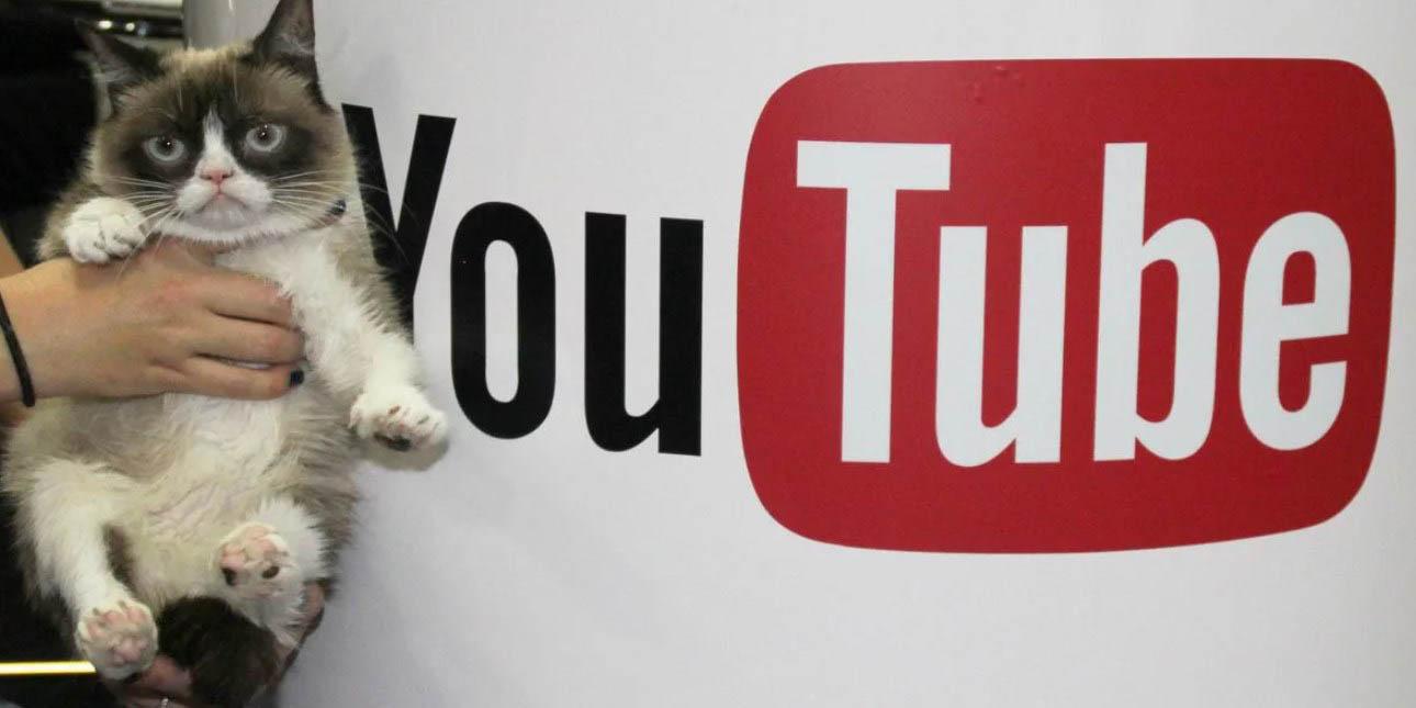 польза видеорекламы